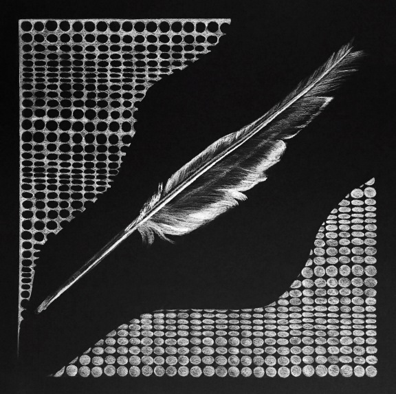 Composition with Feather