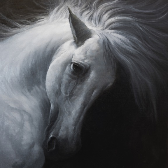 White Horse is Dark Side