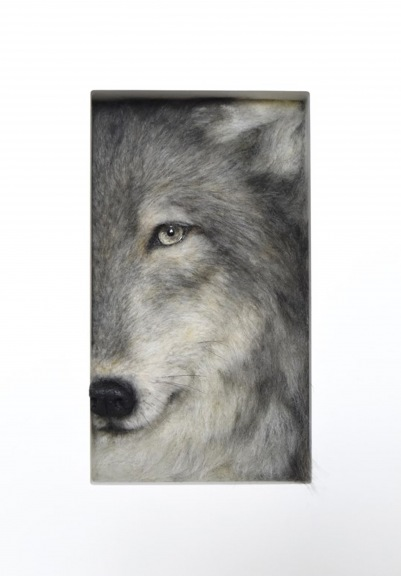 The Wolf Frame